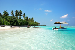 Туристическая страховка в Доминикану
