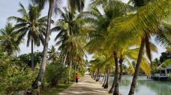 Туристическая страховка на Фиджи